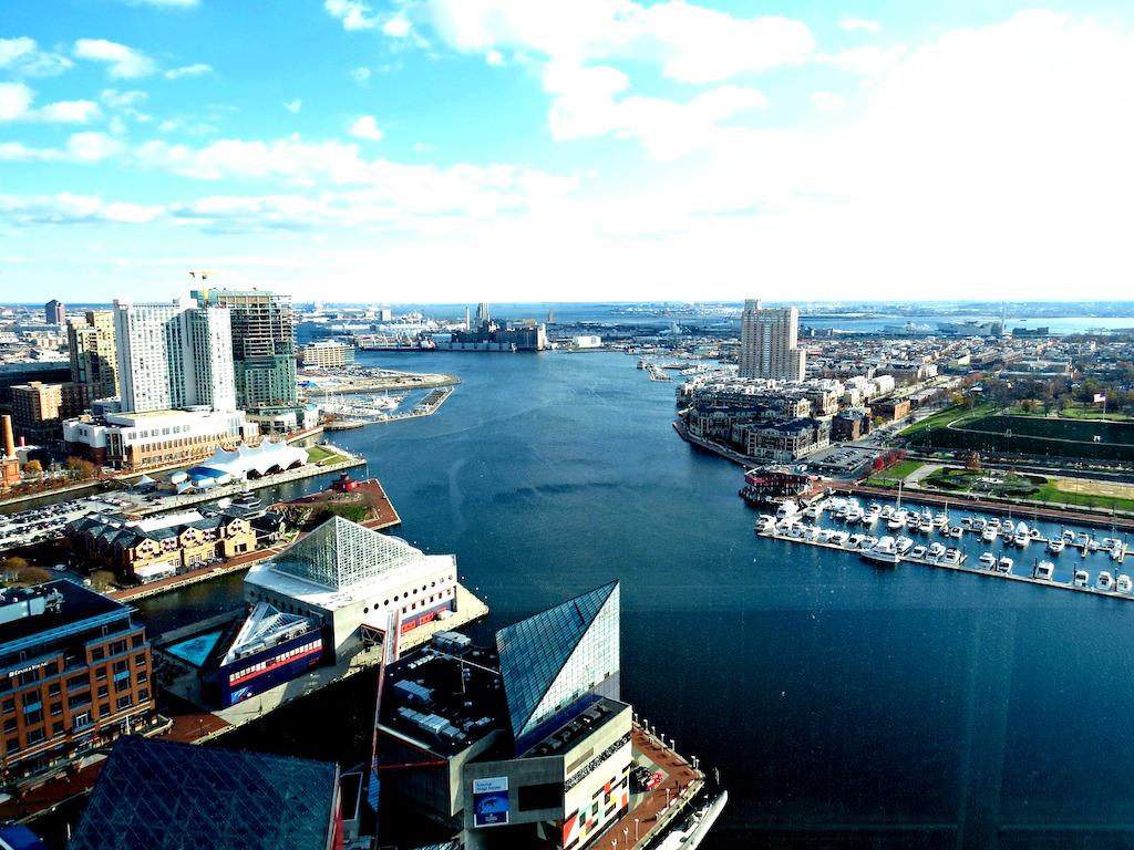 Baltimore 8