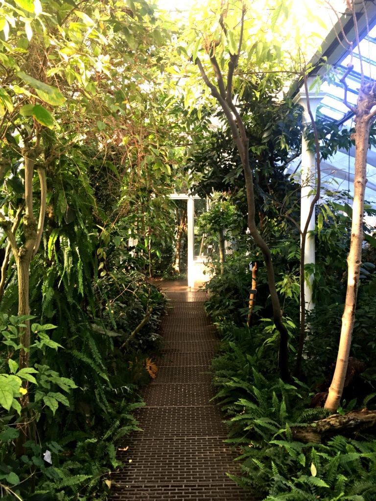 Copenhagen - Botanical Gardens