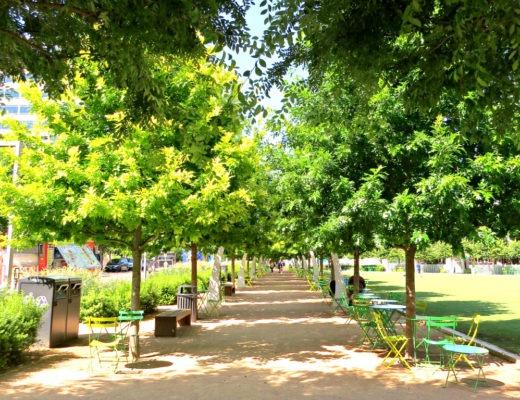 Dallas Klyde Warren Park 2