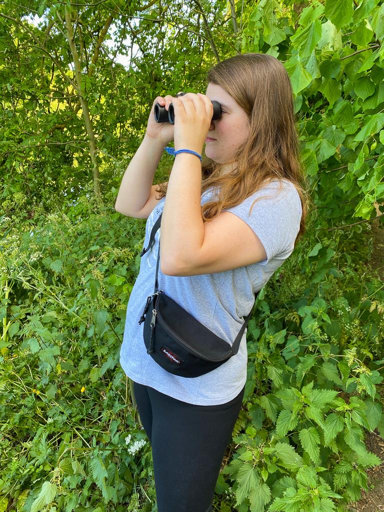 Bird watching marshes