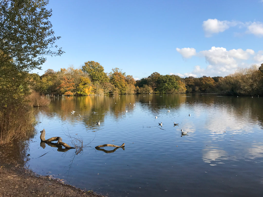 epping forest lake