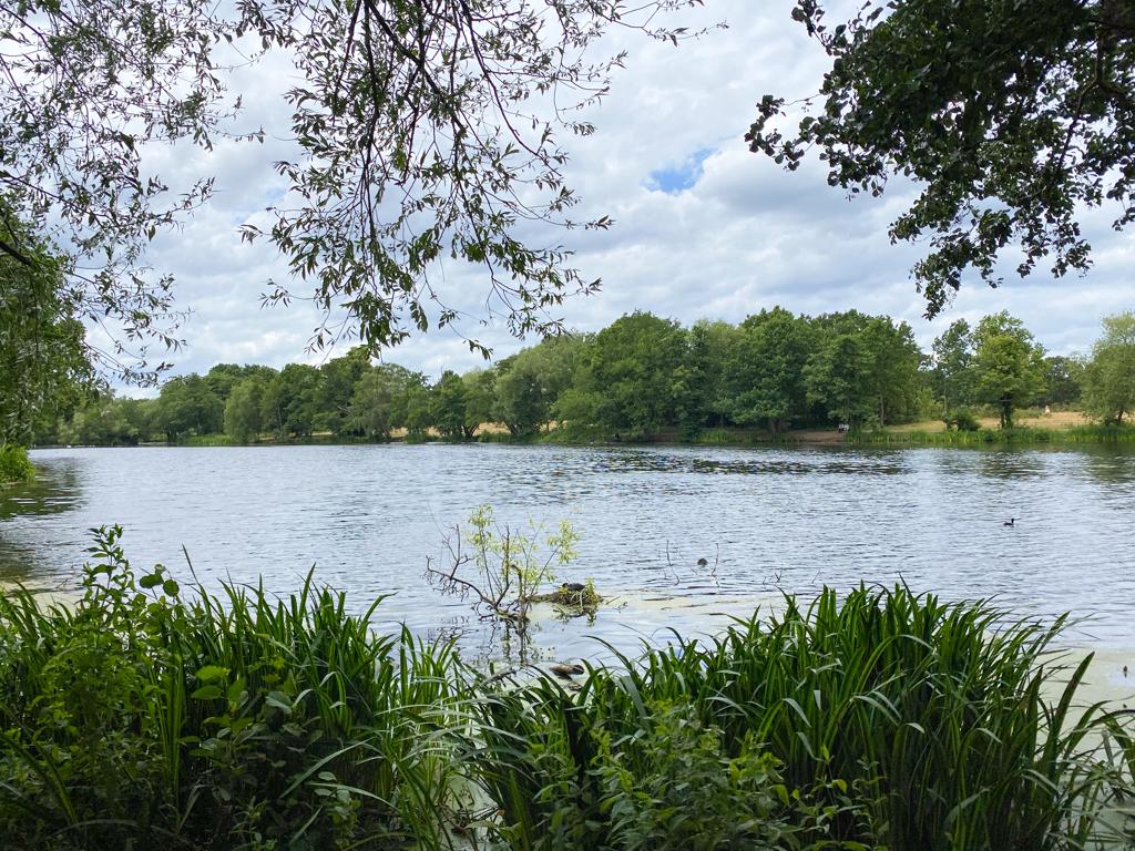 wanstead flats lake