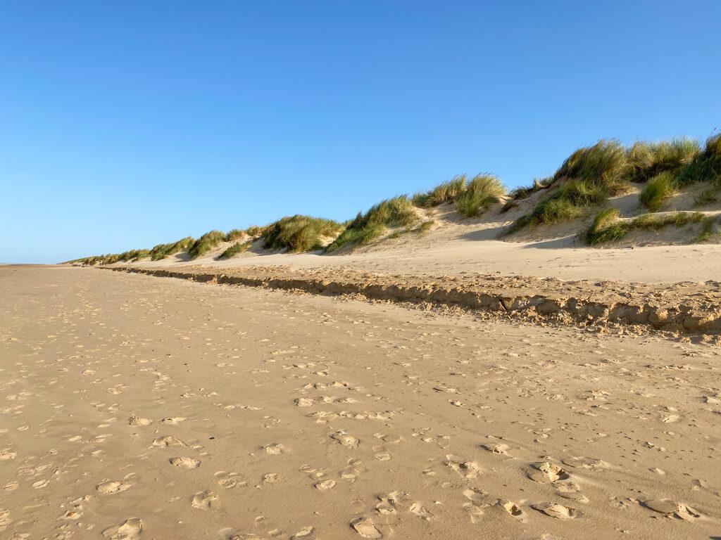 norfolk beach dunes